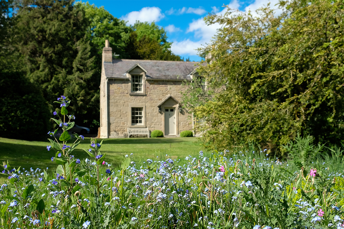 Milne Graden Garden-House-looking-through-Wild-Flowers