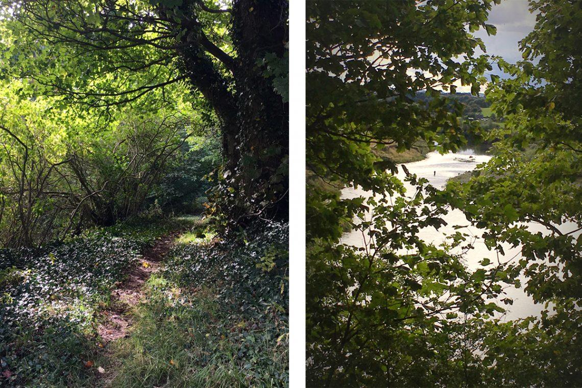 Sun-shining-through-leaves-onto-river-walk-path-river-view-fisherman