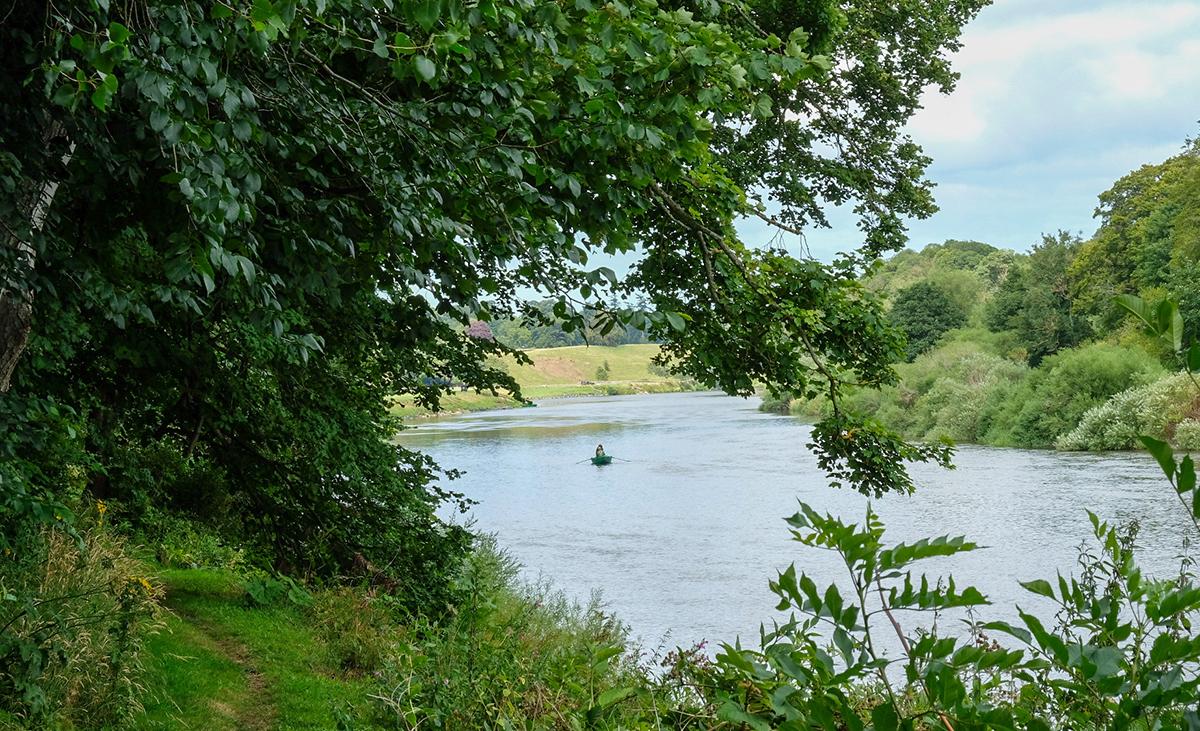 Milne-Graden-Looking-through-trees- at-Fishing-Boat-River-Tweed